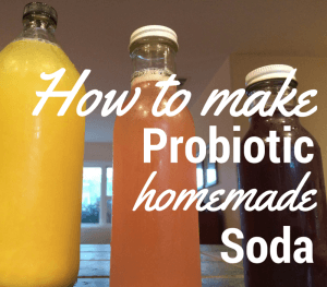 How to Make Probiotic Grape Soda