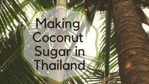 Making Coconut Sugar in Thailand