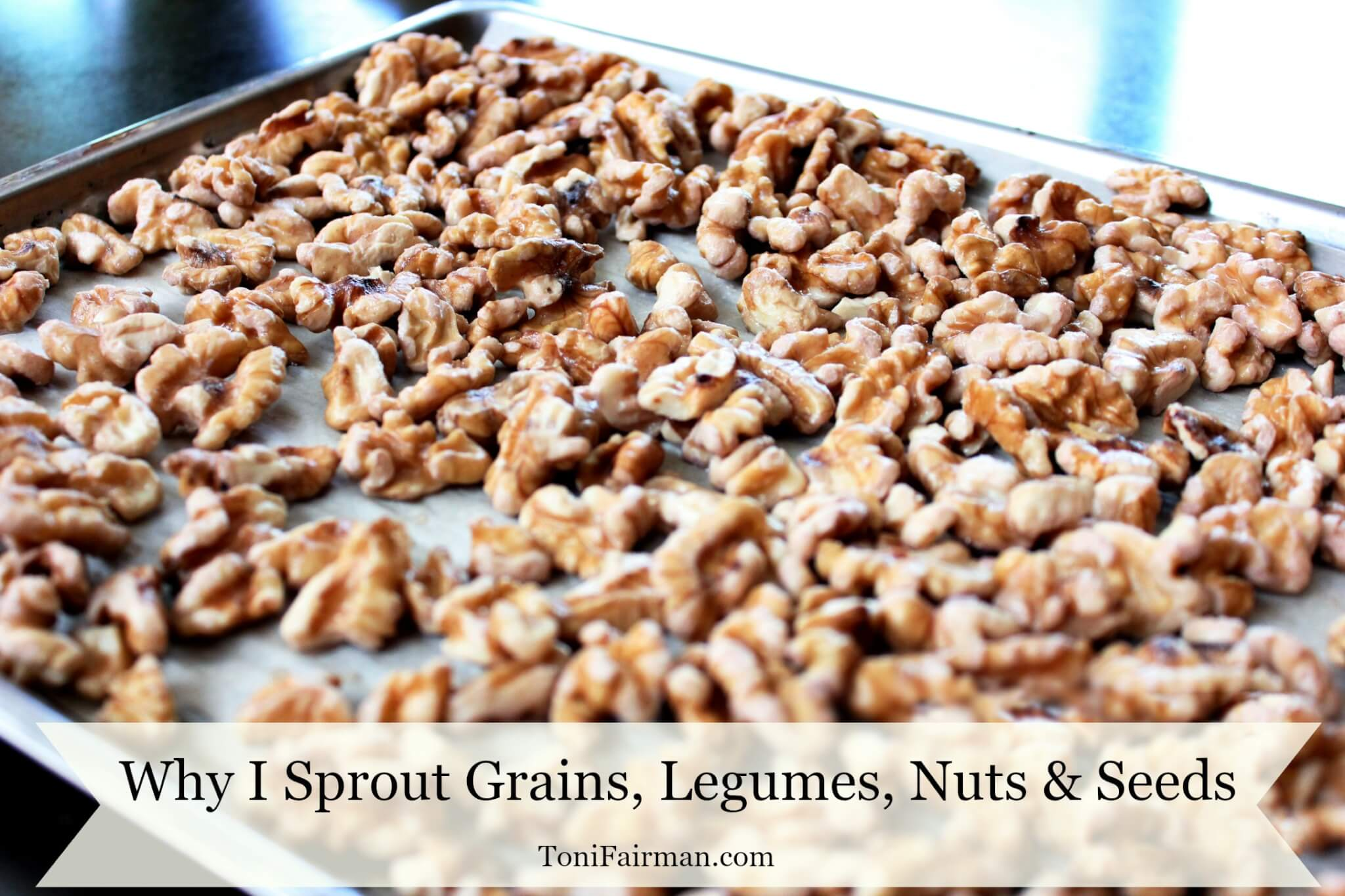 Why I Sprout Grains, Legumes, Nuts and Seeds