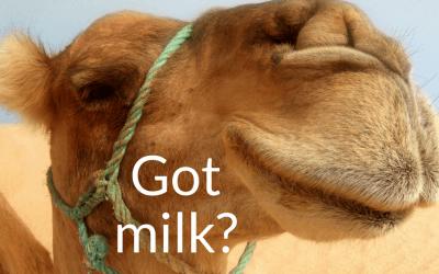 Got Camel Milk?